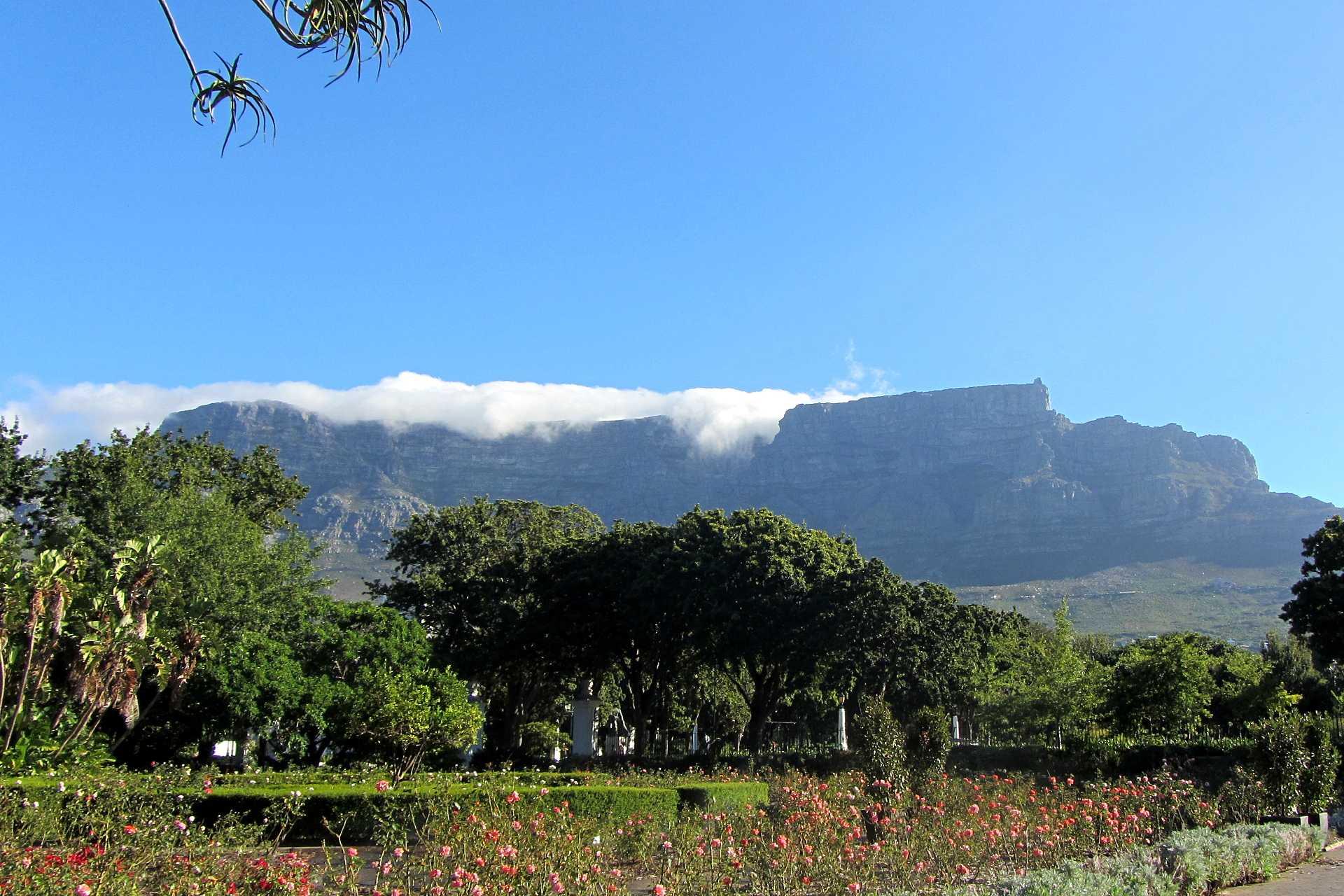 Beautés du Cap et safari au parc Kruger - Confort
