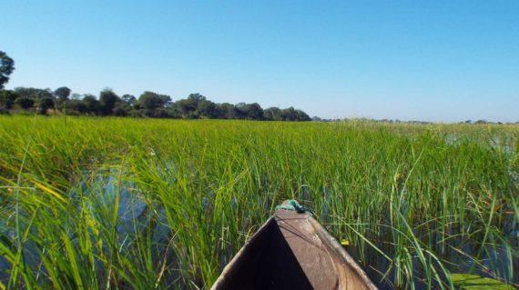 Caprivi - Mokoro sur le fleuve Kavango