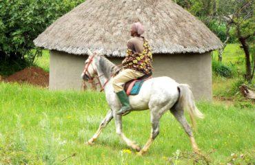 Lesotho - Découverte d'un village