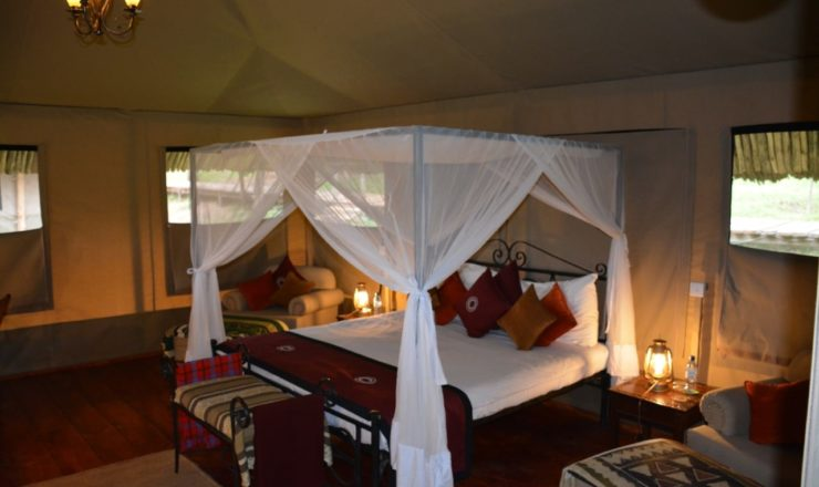Ngorongoro Forest Tented Lodge - tente équipée