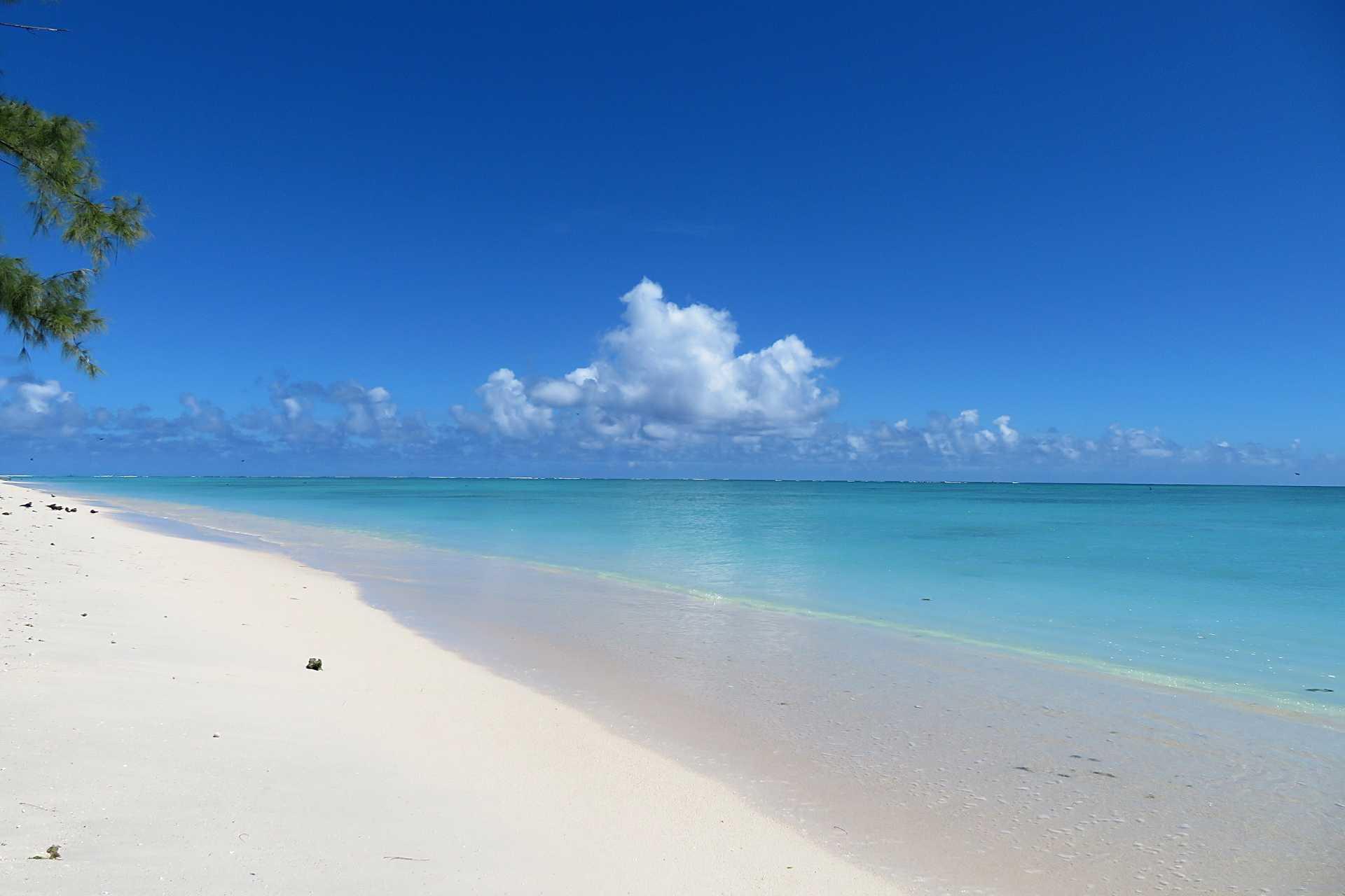 Rodrigues - L'île aux Cocos