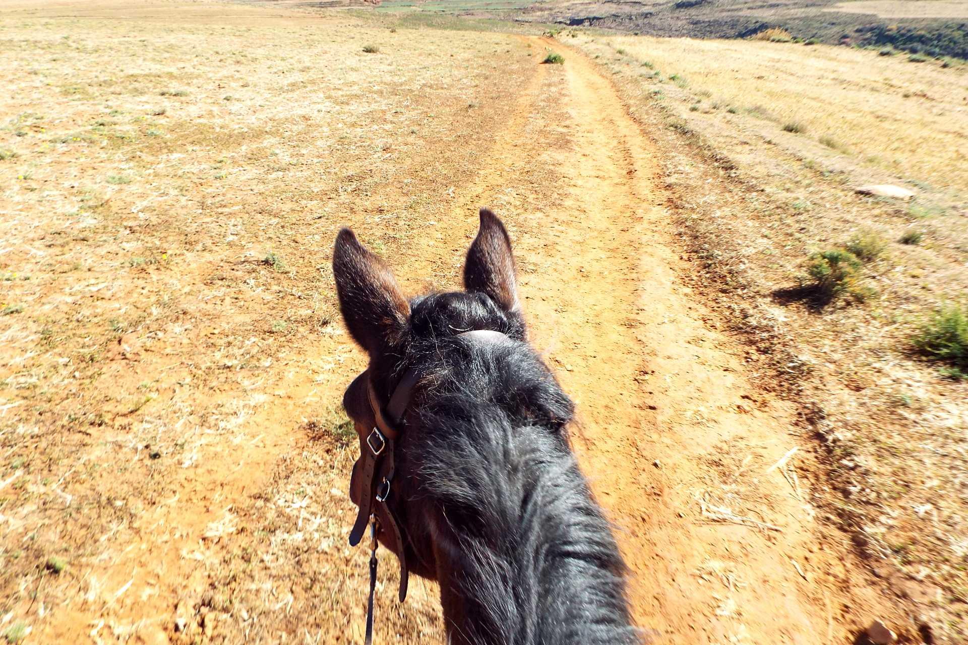 Trek à cheval au Lesotho