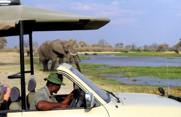 Botswana - Mobile Safari avec un guide