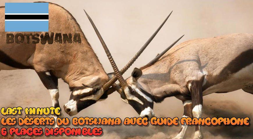 Les déserts du Botswana avec guide francophone