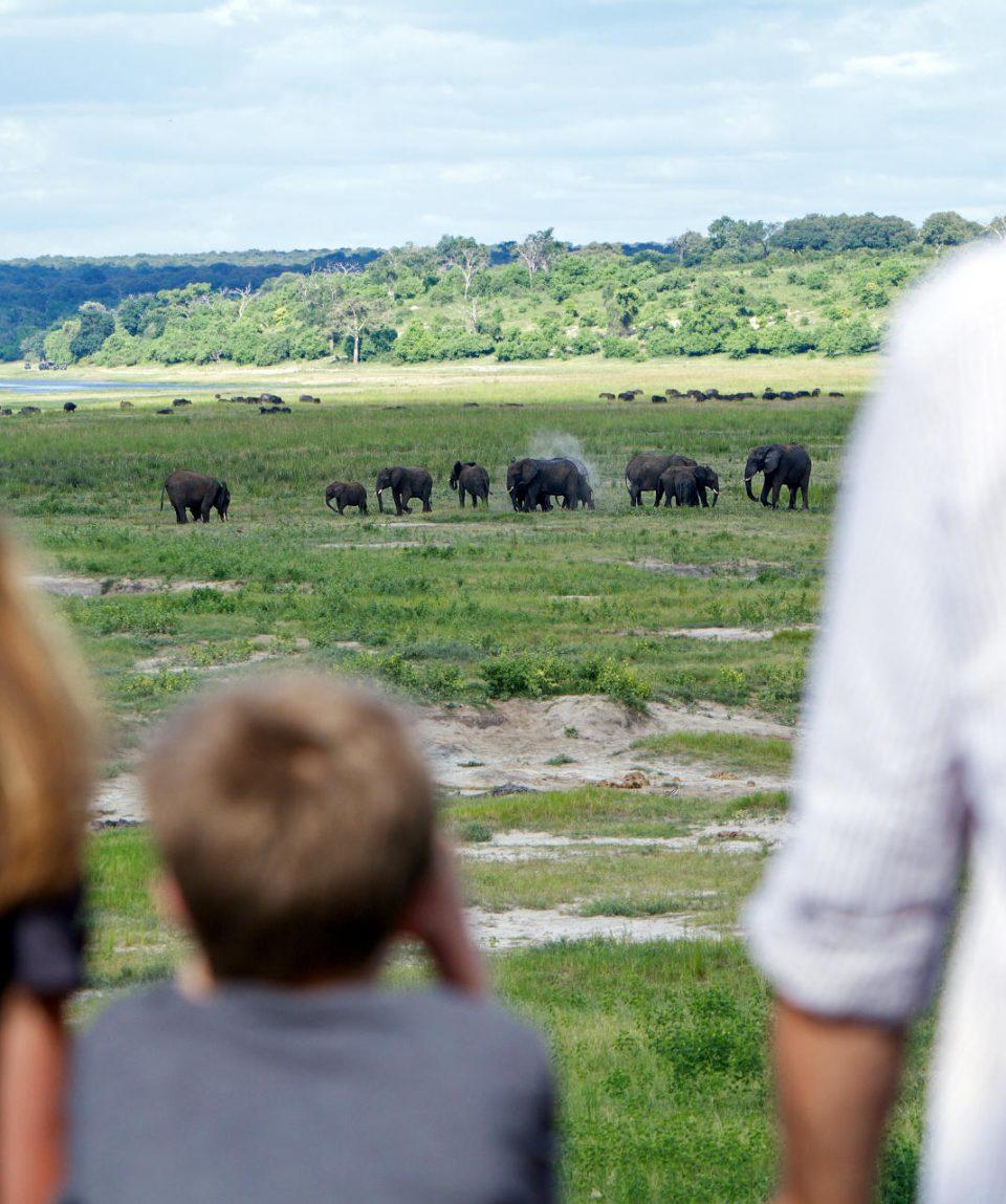 Safari exceptionnel en famille