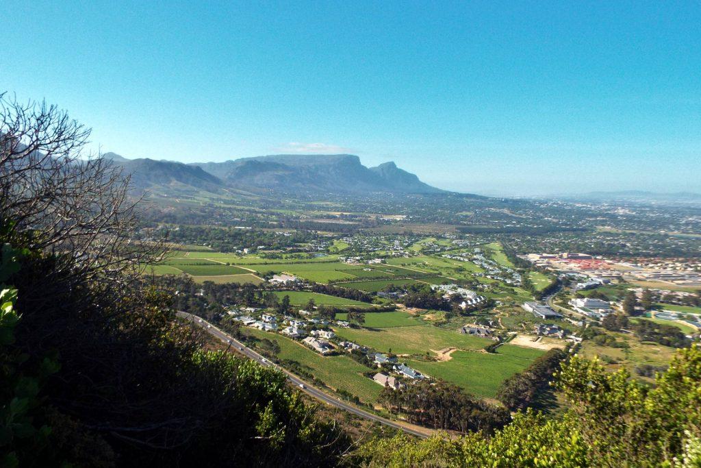 Afrique du Sud - Cape Town - Constantia