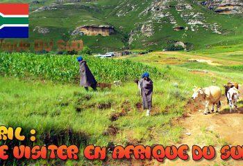 Que visiter en Afrique du Sud au mois d'Avril