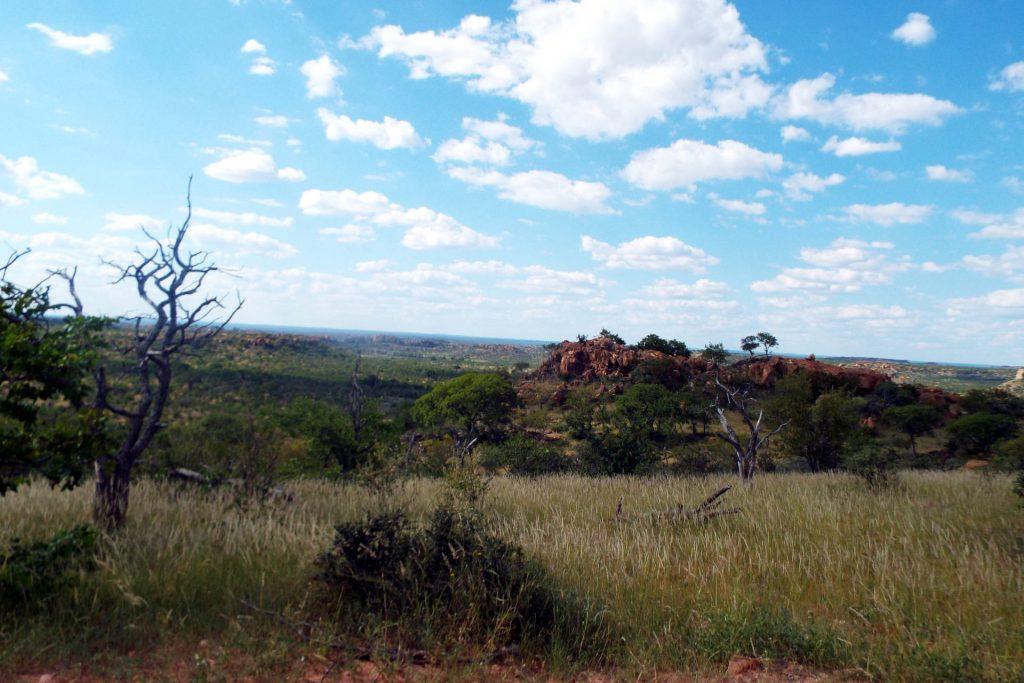 Afrique du Sud - Mapungubwe - paysage