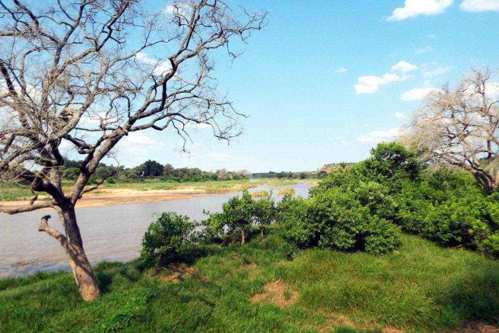 Afrique du Sud - Mapungubwe - point d'eau