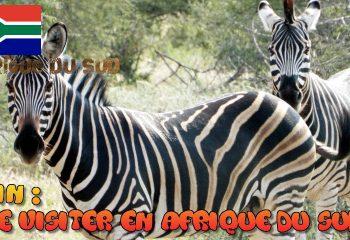 Que visiter en Afrique du Sud au mois de Juin
