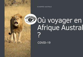 Où voyager en Afrique Australe ?